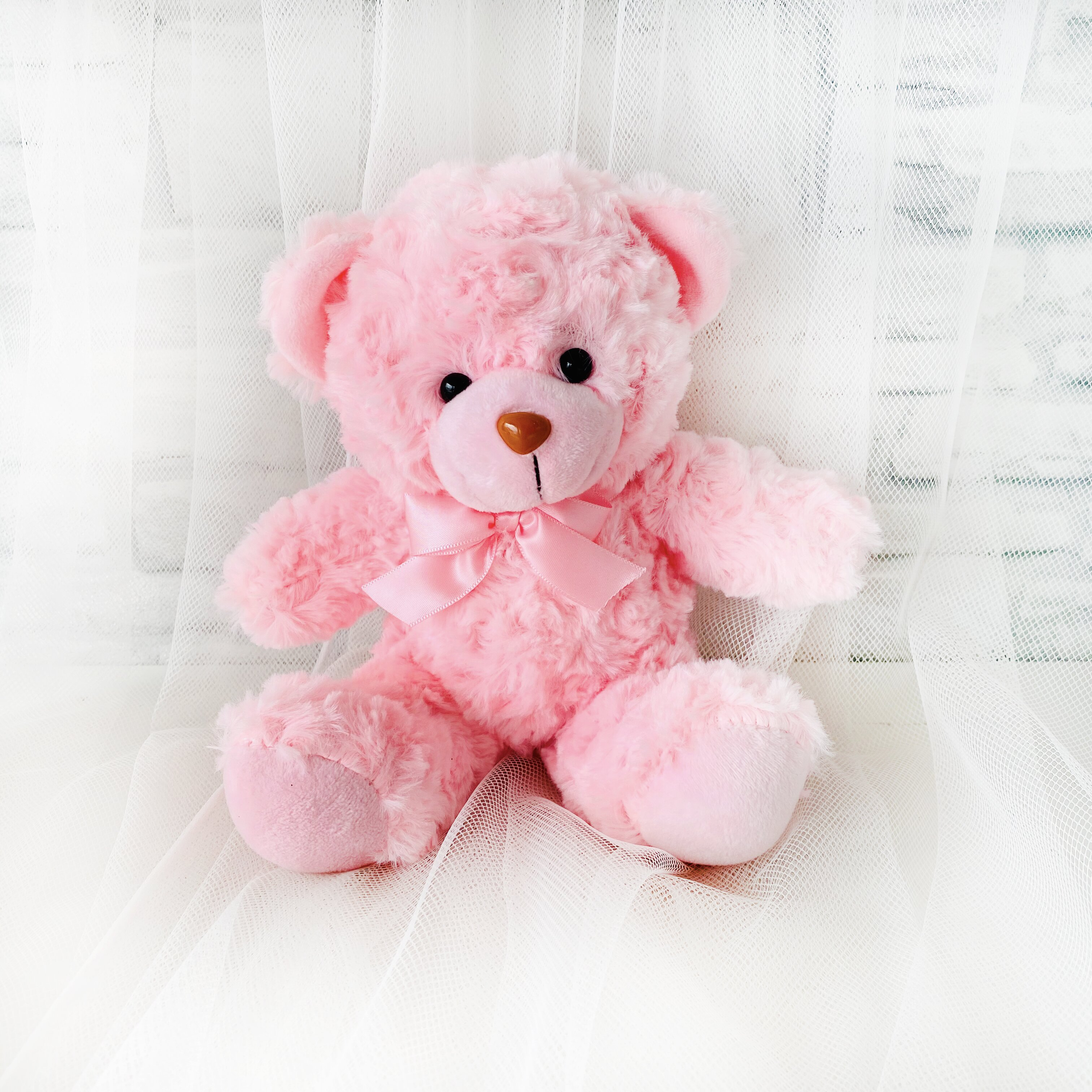 6 inches Pinky Bear - Freeland Floral 自由花苑